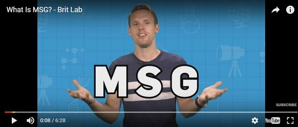 What is MSG video